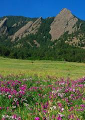 About - Boulder